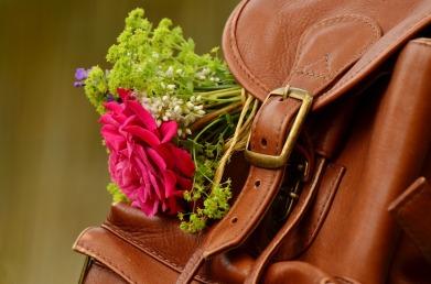 backpack-1482611_1280